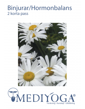 2-korta-pass-for-binjurar-och-hormonbalans-preview_2.png